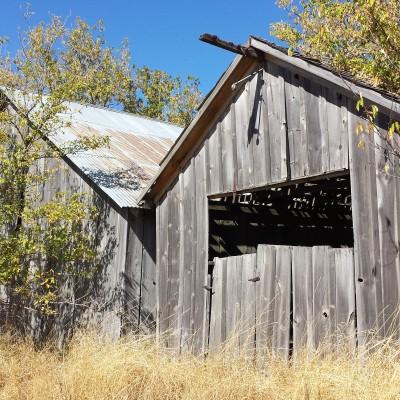 1890 hay barns